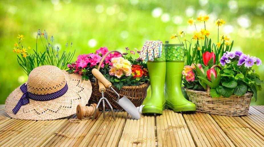 آبیاری گل و گیاه و درختان باغ ویلا در فصل گرما
